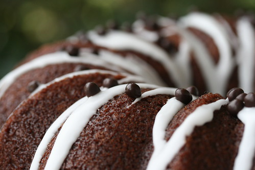 Cinnamon Chocolate Bundt - I Like Big Bundts | by Food Librarian