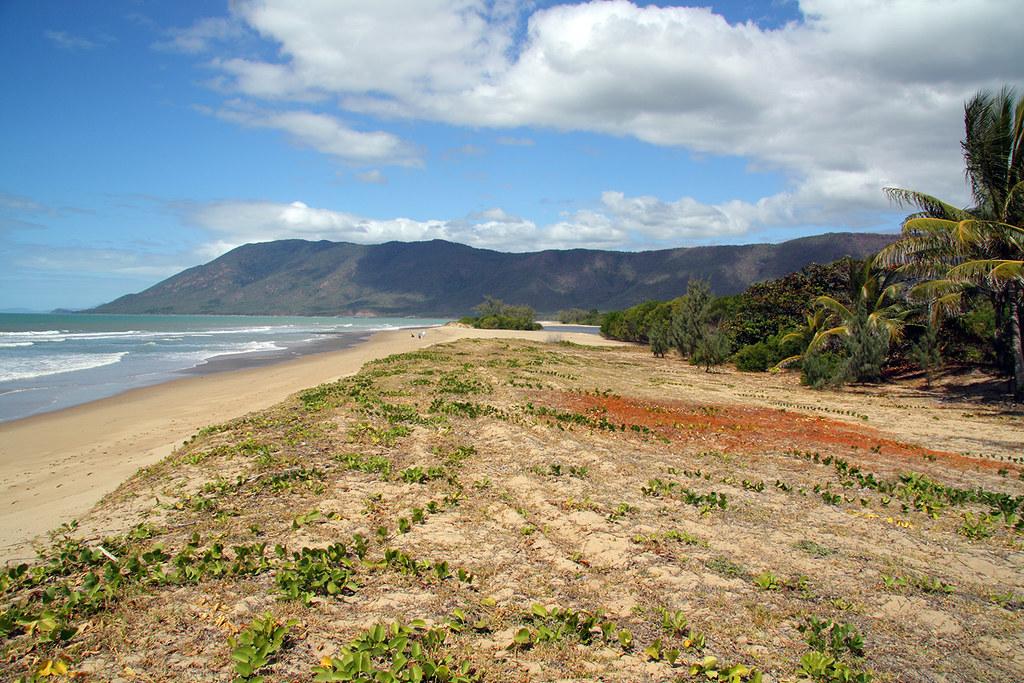 wangetti beach - photo #17
