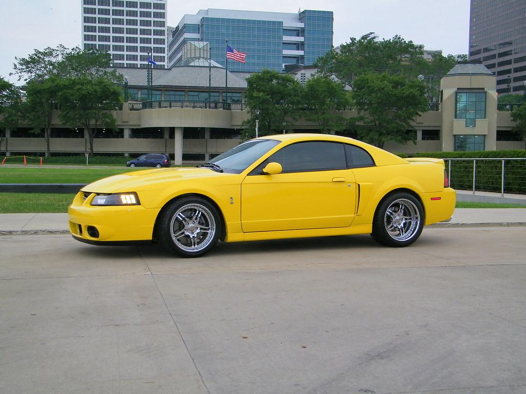 Screaming yellow 2004 cobra by y2k4cobra