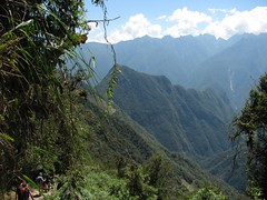 view of Machu Picchu mtn from the jungle on the descent to camp | by cantfindthec