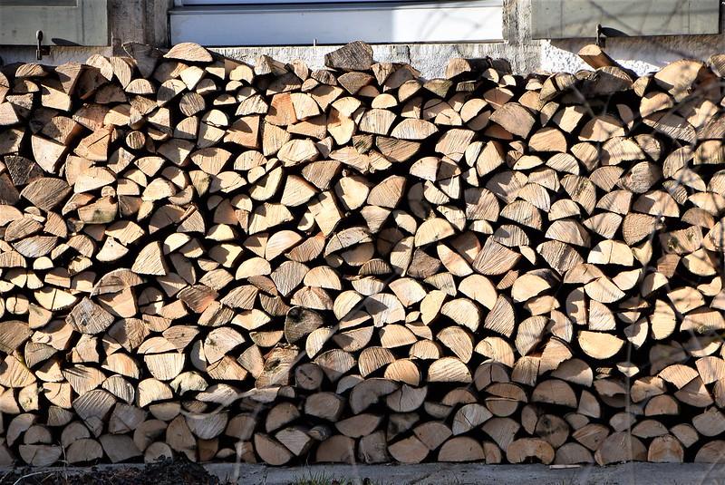 Wood Pile 12.02.2017