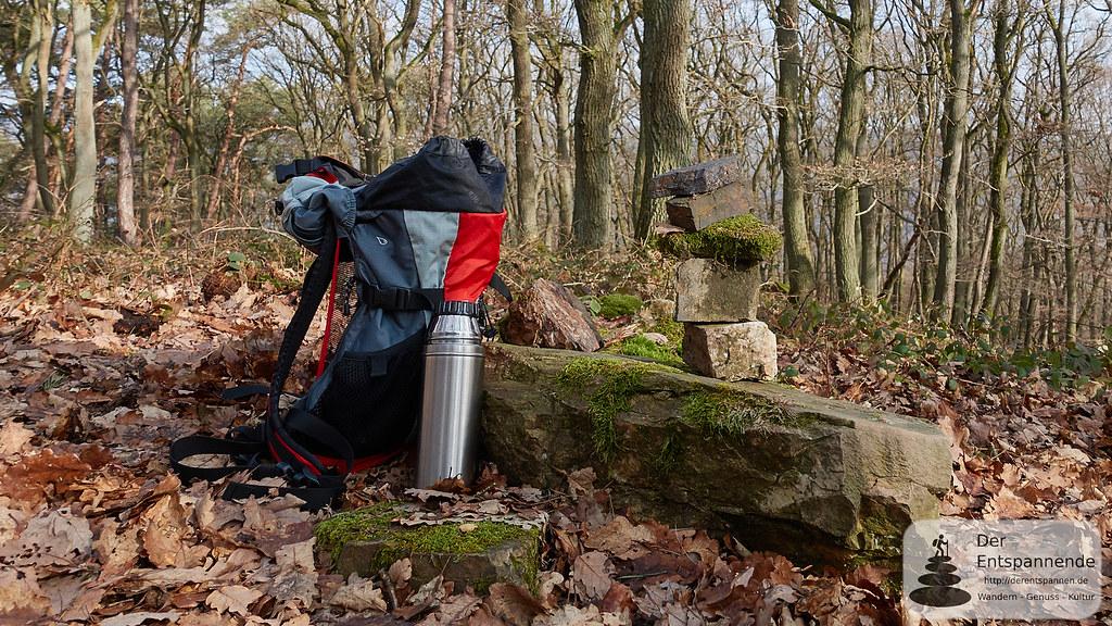 Auf dem Ohligsberg im Binger Wald
