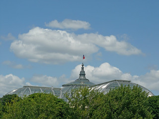 Grand Palais glass roof | by Claudecf