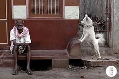 Man and dog by Jan Enkelmann