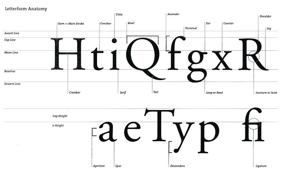 Letterform anatomy | XxmegsOo | Flickr