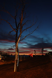 Twilight illuminating the Olympic Sculpture Park | by J.Sod