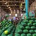 Watermelon Warehouse / Pak Klong Talat / Bangkok