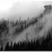Foggy Outcrops
