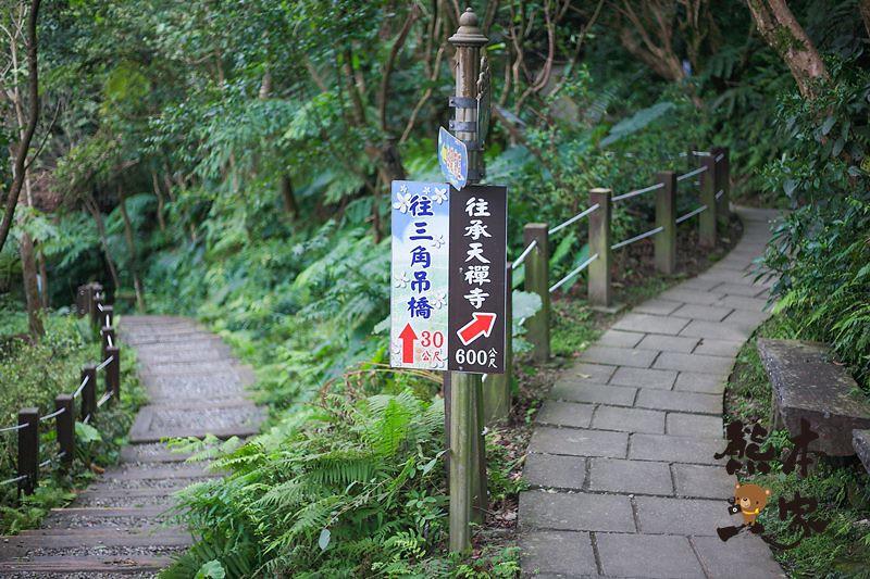 土城獅子亭賞櫻花|桐花公園櫻花季|桐花公園可不是只有油桐花和賞螢哦