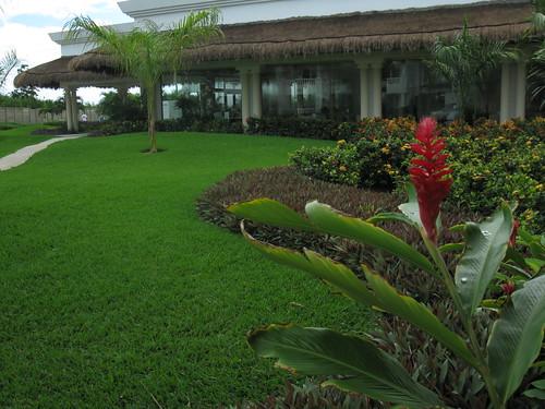 Grand Hotel Riviera Cds