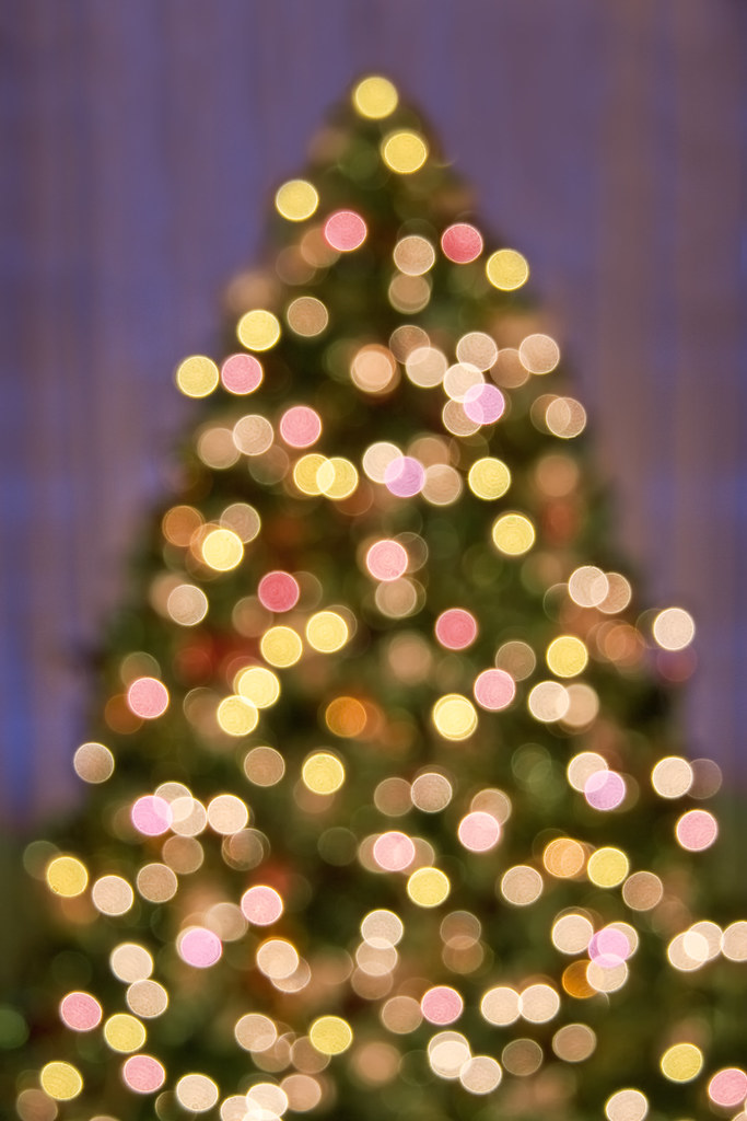 Bokeh Christmas Tree Lights Background Pattern An Out