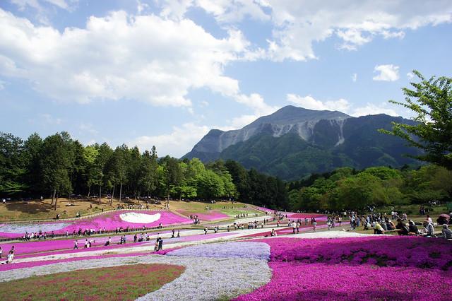 Hitsujiyama Park #004