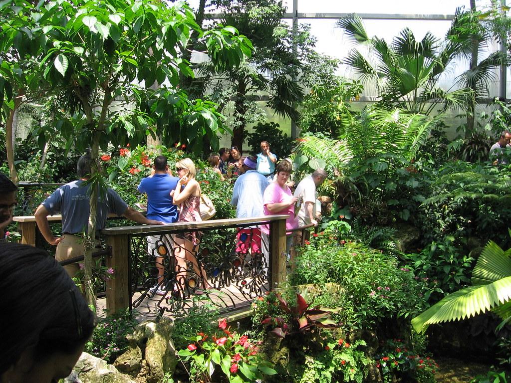 butterfly garden at uf by susanamar - Uf Butterfly Garden