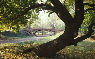 Gothic bridge central park new york city new york flickr for Trodel mobel