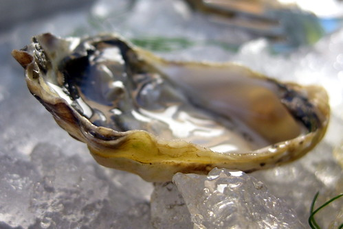 California - Yountville: Domaine Chandon - Oyster | by wallyg