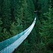 Capilano Suspension Bridge, Vancouver, British Columbia - I do not own the right for this picture