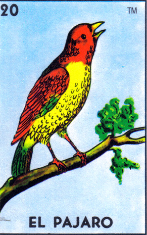 el pajaro loteria inspiration for invitation free clipart camera picture free clip art camera black cat