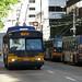 Seattle trolley bus