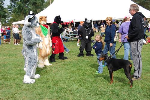 Image Result For Lollypop Farm Dog
