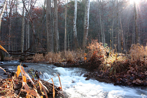 Do Wilsons Creek Douthat State Park Wilson 39 S Creek On
