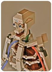 Lego Anatomy Skeleton: 3/4