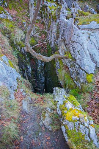 Parque Natural de Gorbeia  #DePaseoConLarri #Flickr -5382