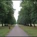 Hyde Park walkway