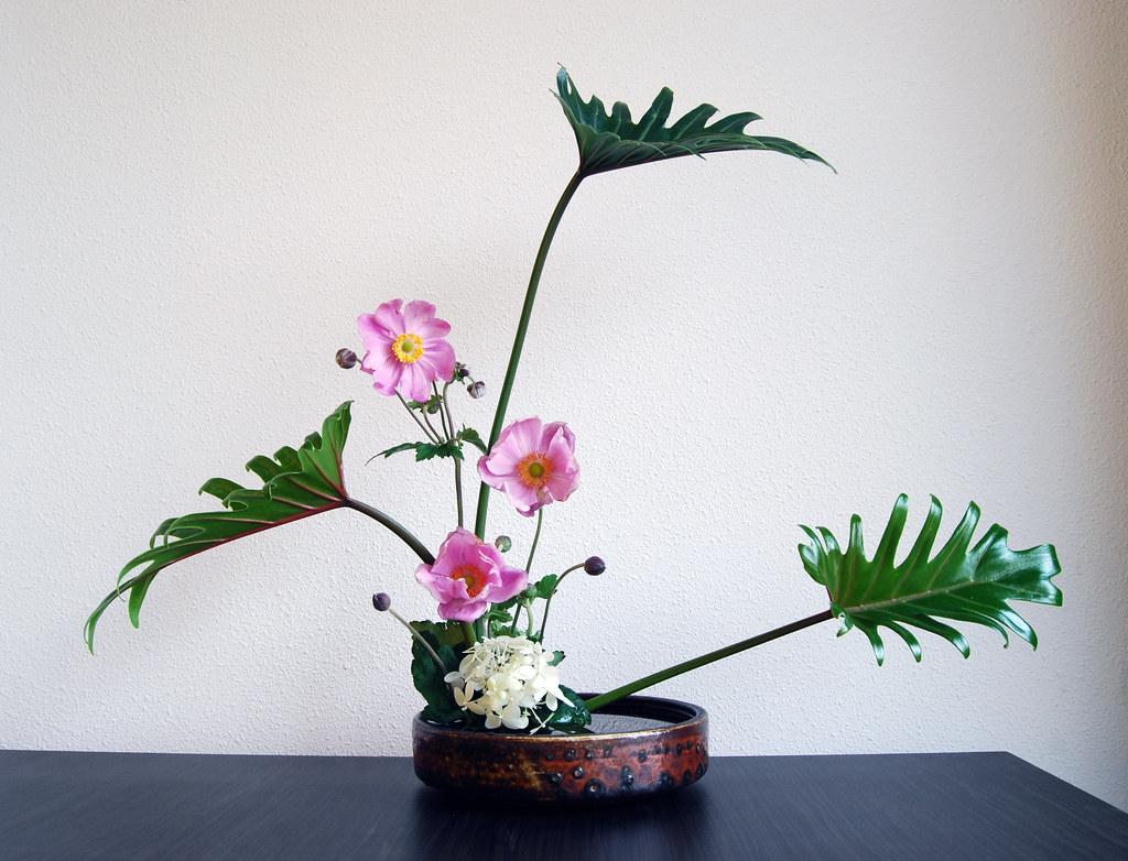 Ikebana Japanese Anemones Otomodachi Flickr