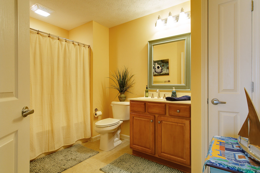 Guest Bathroom Ideas With Pleasant Atmosphere: 4311 Ivy Crest Circle Guest Bathroom