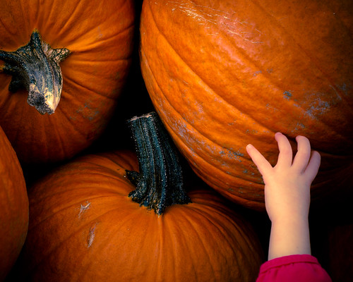 reaching for Halloween... | by Will Montague