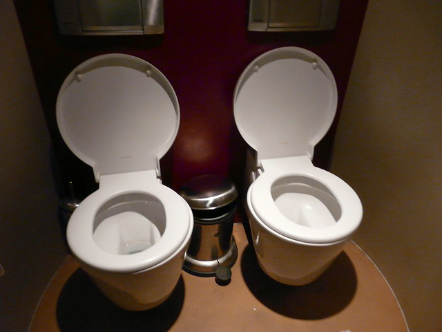double toilet flickr photo sharing. Black Bedroom Furniture Sets. Home Design Ideas
