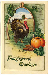 Thanksgiving postcard_turkey_tatteredandlost | by tattered and lost attic