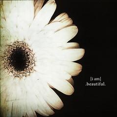 [i am] .beautiful.