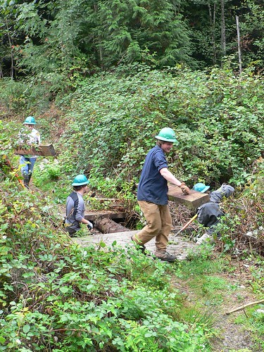 Volunteers Remove Boards from an Old Bridge at Tiger Mountain | by Washington State Department of Natural Resources