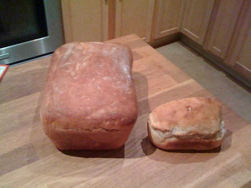 Attempt #2 to make sandwich bread | by selena marie