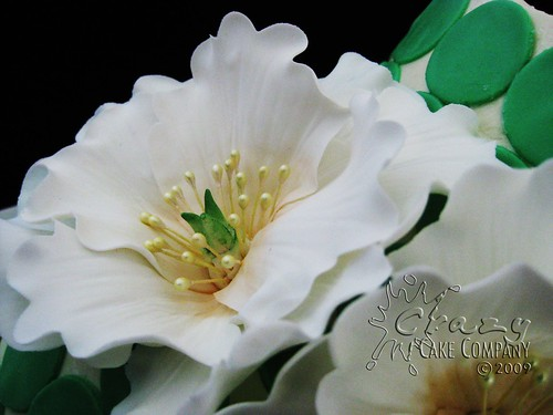 Gumpaste flower close-up | by Crazy Cake Lady