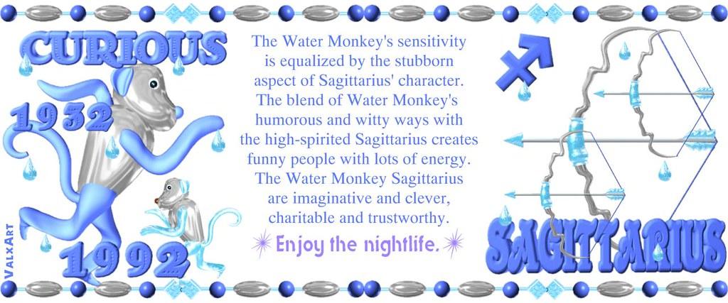 Sagittarius monkey