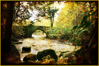 Autumn at the Clare Glens | by derhur