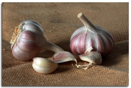 garlic | by Linda Cronin