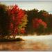 -- autumn mist --