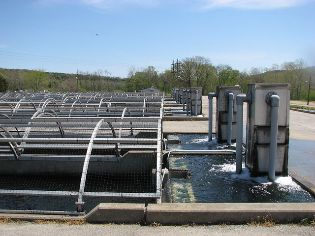 Shepard of the hills fish hatchery holding tank and for Fish hatchery branson mo