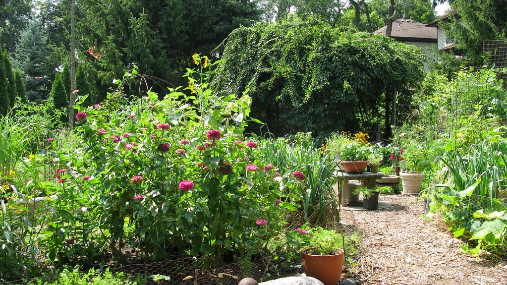 Vicki Nowicki 39 S Garden Throughout The Garden There Are