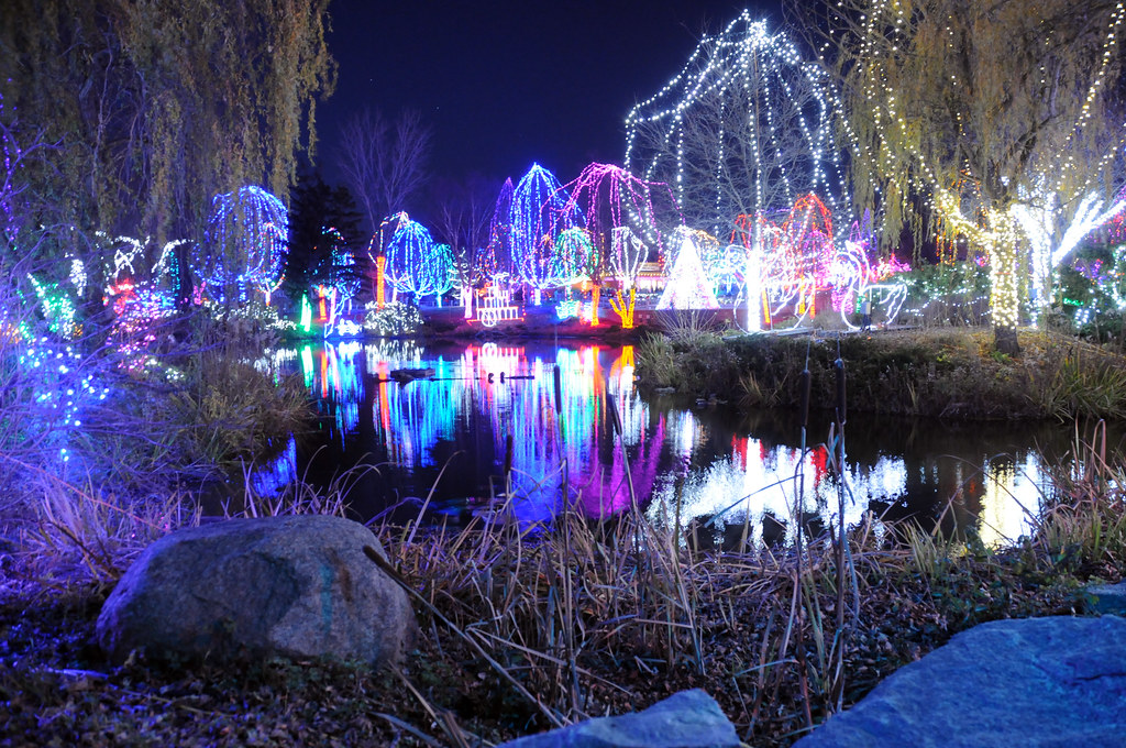 Columbus Zoo Christmas Lights