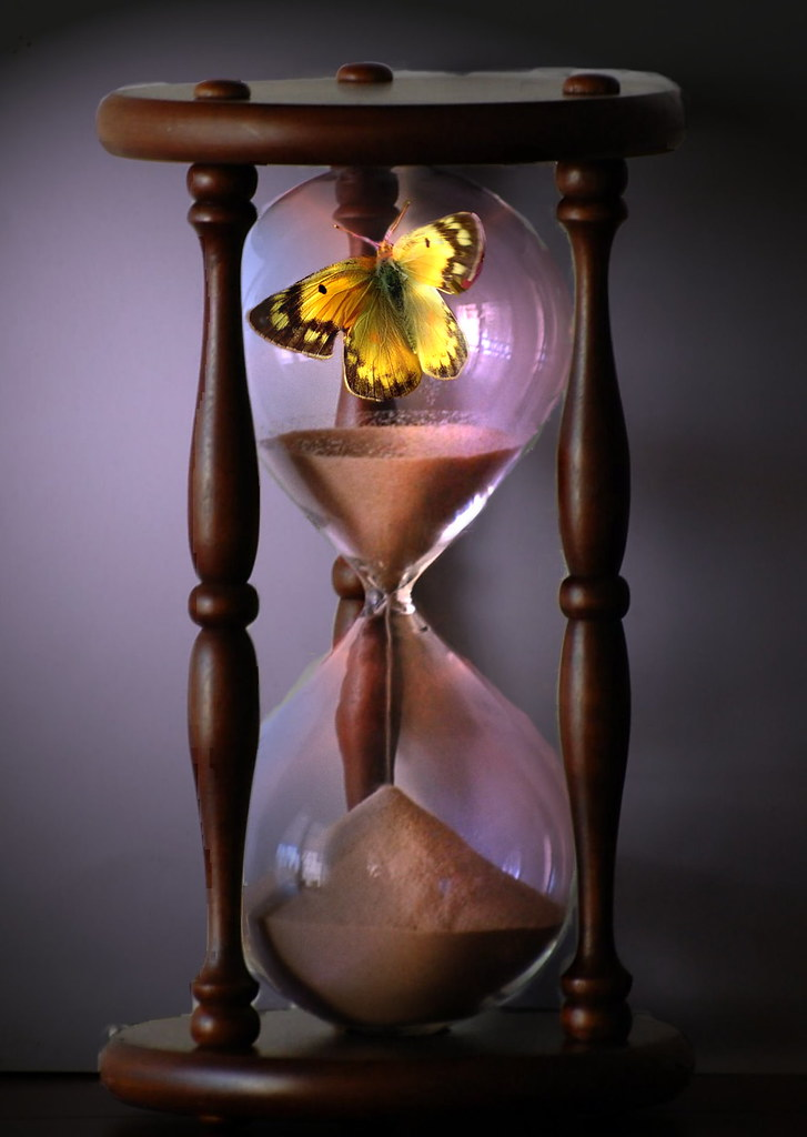 Image result for trapped in time