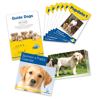 Sponsor a puppy | guide dogs for the. Sponsor a puppy | guide.