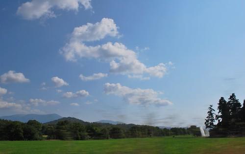 grassland under clouds