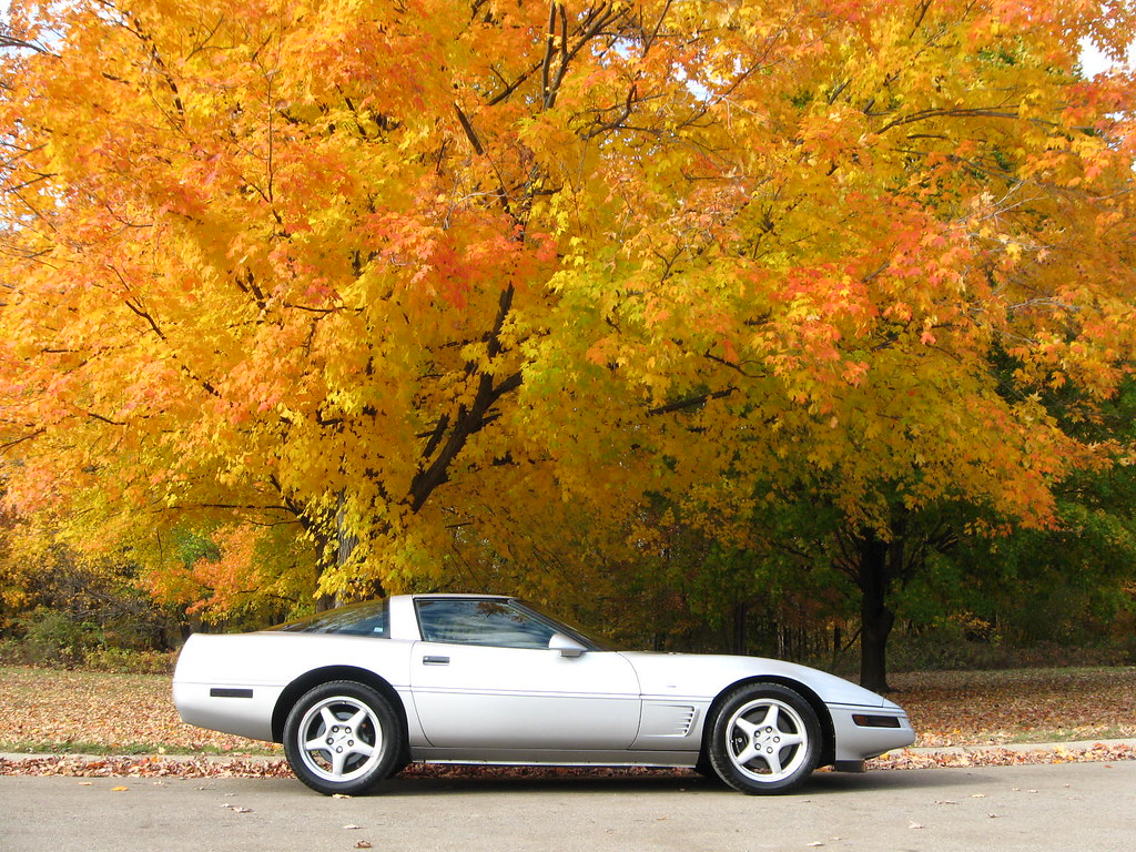 corvette fall tree colors park 1996 2009 nice color tom flickr