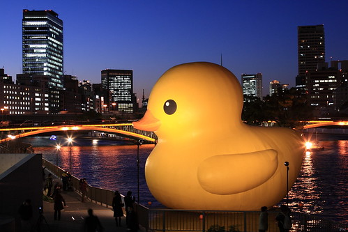 A huge rubber duck is back to Osaka !! | by Teruhide Tomori