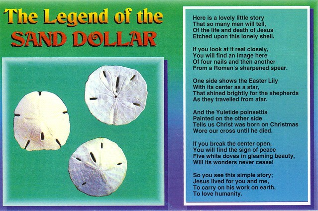 Sand dollar legend postcard available flickr photo sharing