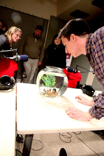 WNPR's Catie Talarski & Patrick Skahill checking out the seahorses | by WNPR - Connecticut Public Radio